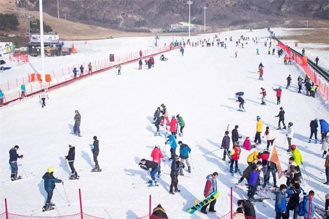 万博手机官网登录网页版苹果万博下载:自驾石京龙滑雪,在雪里撒欢